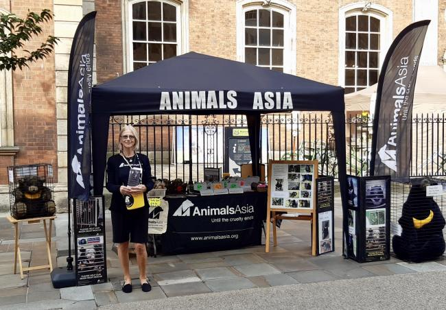 Christine at the Animals Asia stall outside Worcester Guildhall
