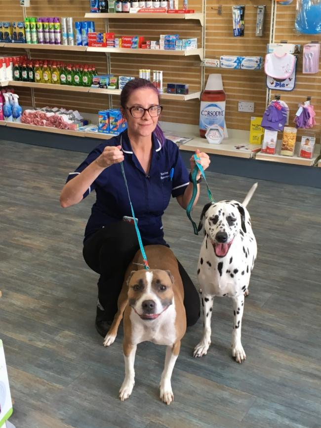 Marianne Jones from Scales Pharmacy who helped with the two stray dogs