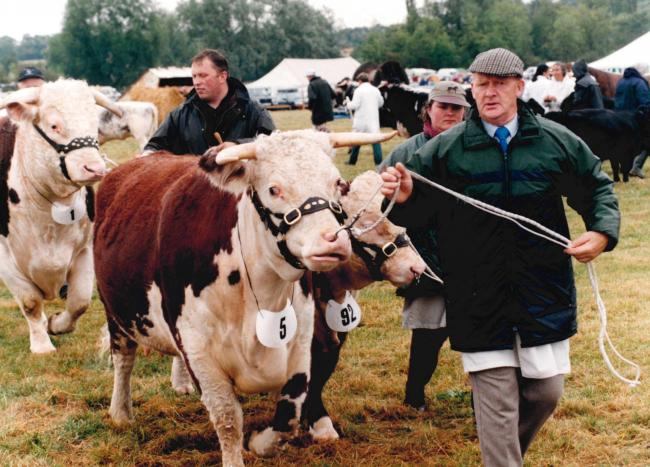TODAY'S picture from the archive of the Worcester News dates back to August 1998 and was taken at that year's Madresfield Show. Because of poor weather, the show was badly attended, and the organisers were in doubt whether the event would be able
