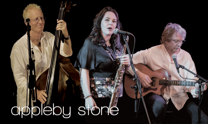 Ale House Christmas Concert With Appleby Stone