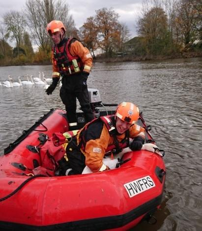 BRAVE: Fire and rescue service help sick swan
