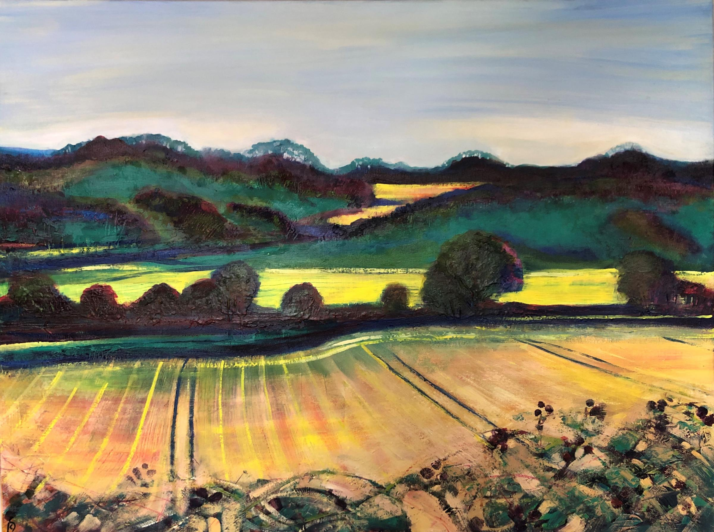 Lorraine Symms - 'Living with Landscapes'