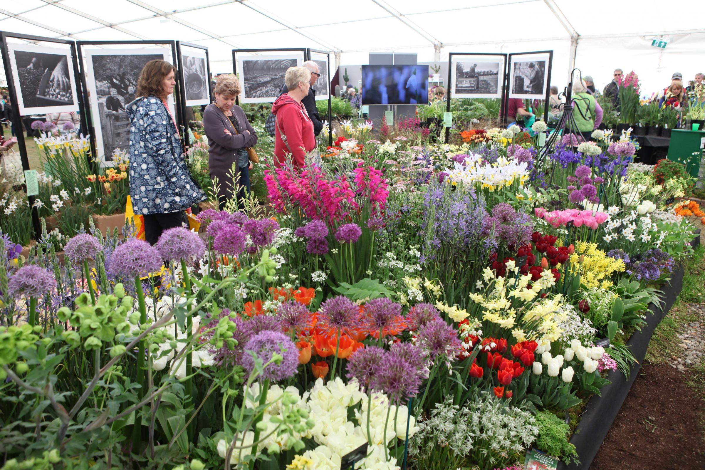 RHS Malvern Spring Show returns this May with VE Day theme