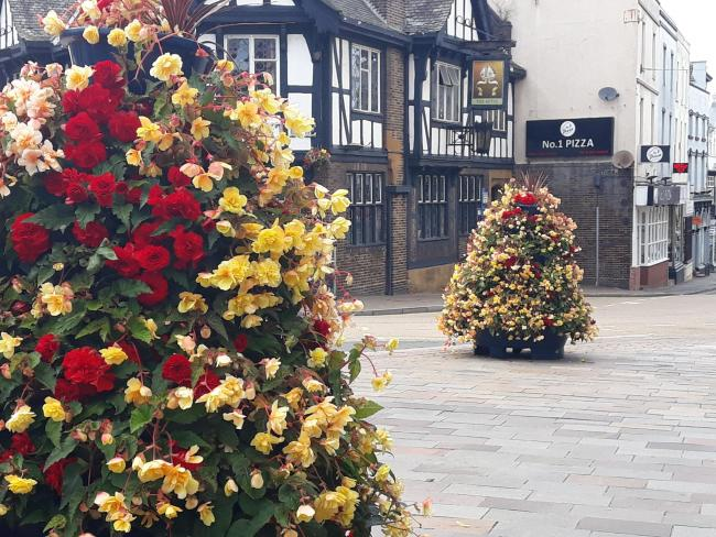 Stourbridge looking bloomin' lovely for last year's Bloom campaign which clinched the town its ninth gold award