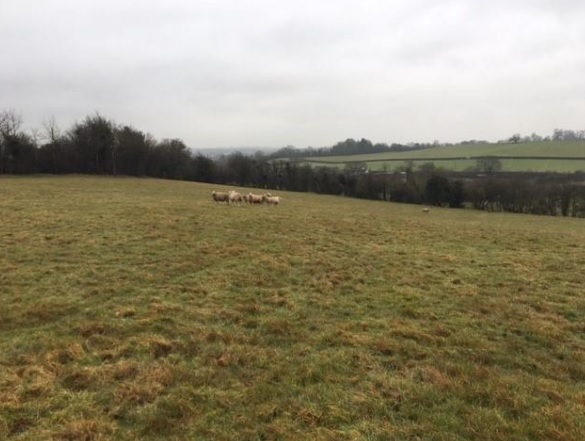 Villagers raise concerns over plan to build 'dominating and unnecessary' farm building