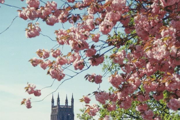 Worcester Cathedral is holding a series of recitals this autumn. Picture by John Phillpott.