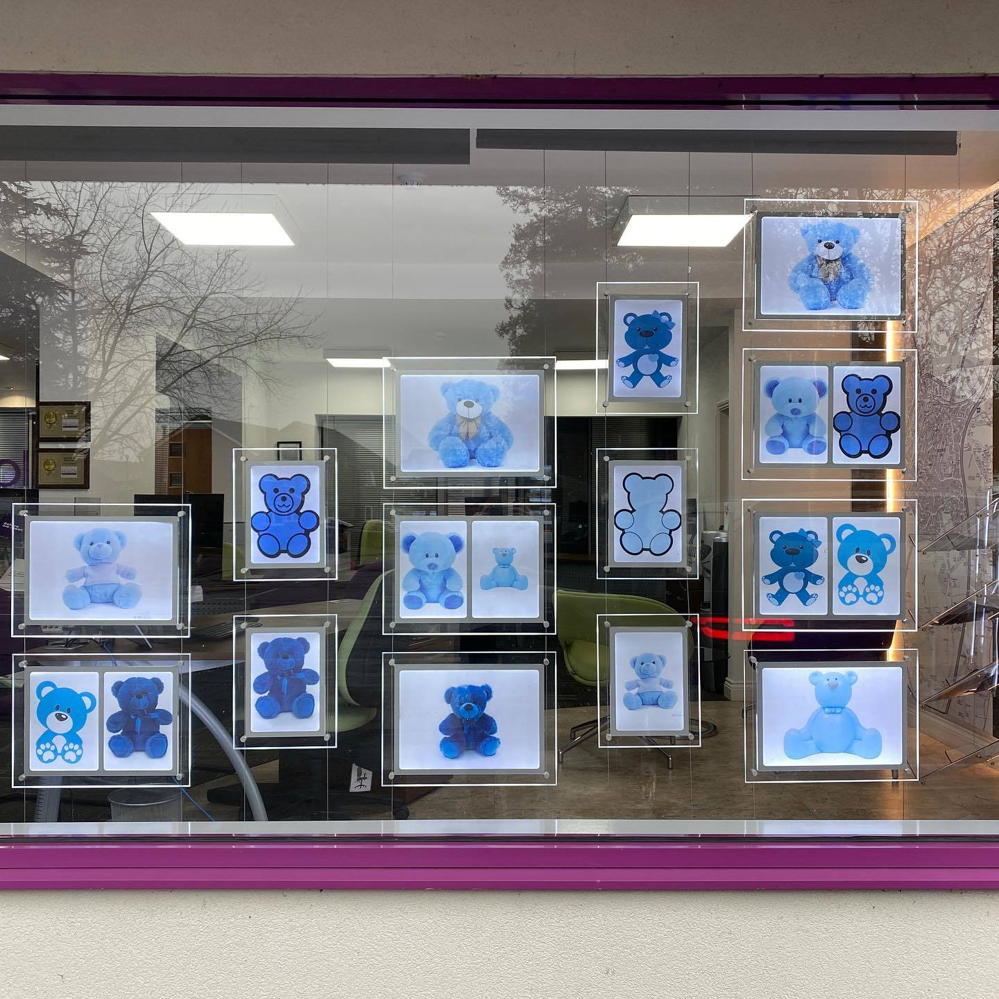 UNITED: Nicol & Co have made powerful use of their display windows in Droitwich, Worcester and Malvern