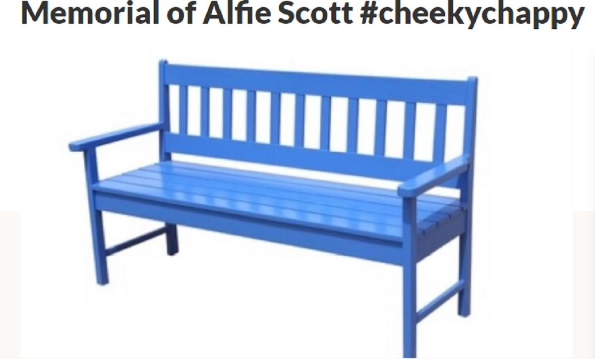 PLAN: The hope is that a memorial bench can be set up for Alfie. Picture from Facebook
