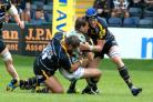 EXPERIENCED HEAD: Warriors' Chris Jones (right) will be getting stuck into Northampton at number eight.
