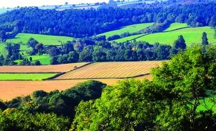 SCENIC: A view of the Teme Valley pictured from Ankerdine Hill.