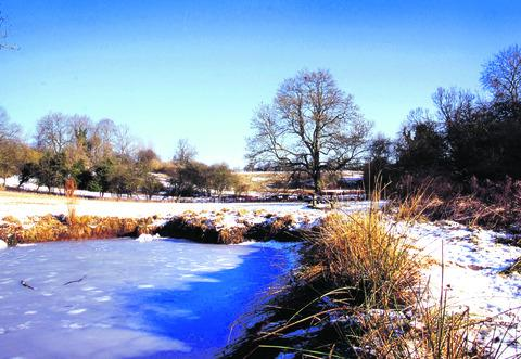 FROZEN: The moat at Inkberrow's Millennium Green in a cold snap.