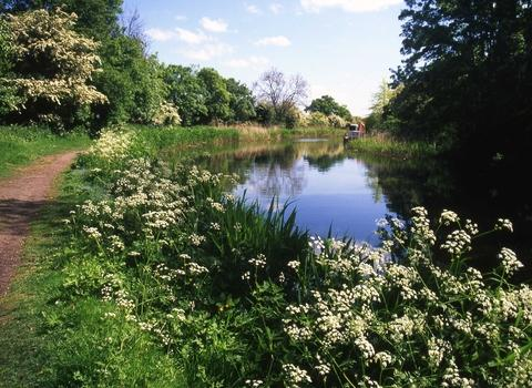 Worcester News: See the canal wildlife on nature walk