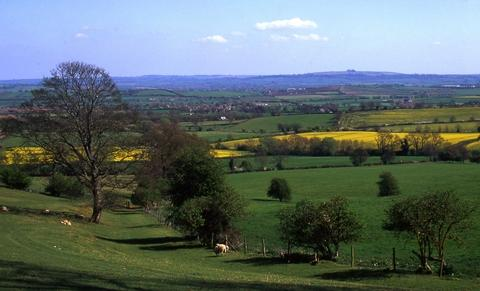 PRETTY AS A PICTURE: A view of Brailes Hill from Ilmington Downs.