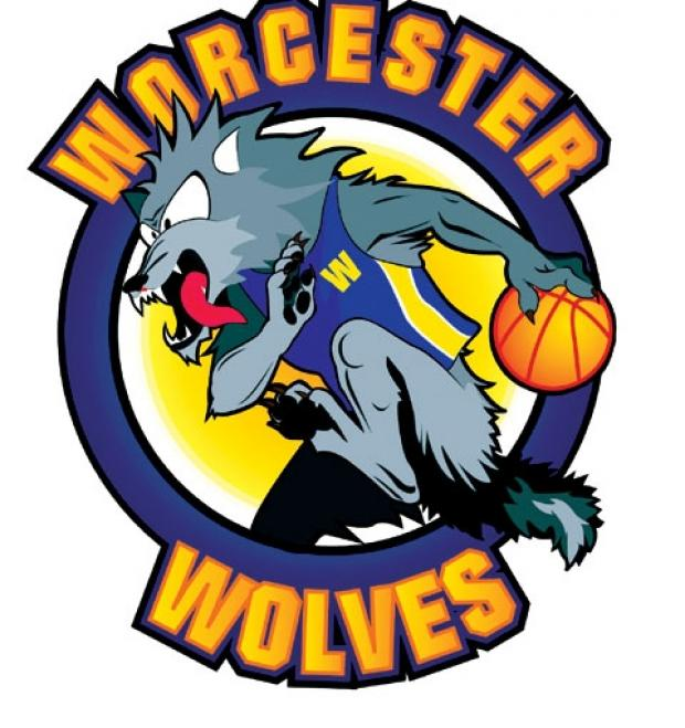 Worcester Wolves pair in league's top team