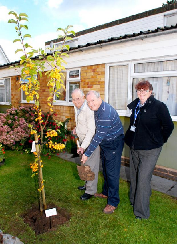 TREE PLANTING: Ron Elwood with Jeff Porter and Lesley Martin. Picture by Nick Toogood.
