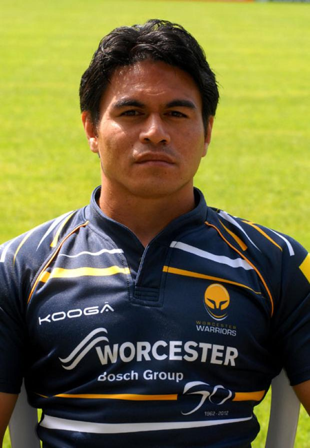 DAVID LEMI: Back to face London Irish.