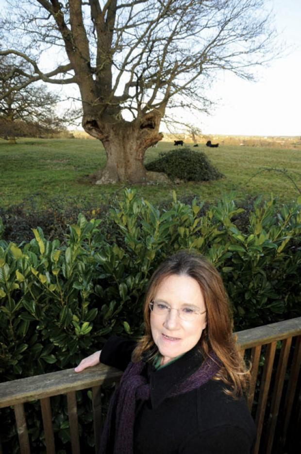 LEAVE IT ALONE: Sylvia Partridge at parkland at Tunnel Hill, near Upton-on-Severn, where developer Cala Homes is applying to build 22 new houses.