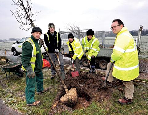 PLANTING WHATEVER THE WEATHER: From left, Trevor Smith, assistant wildlife ranger; Steve Reynolds and Heather Bainbridge, rangers; Anne Bonsor, city council director of regeneration; and city council managing director Duncan Sharkey. 5012202701