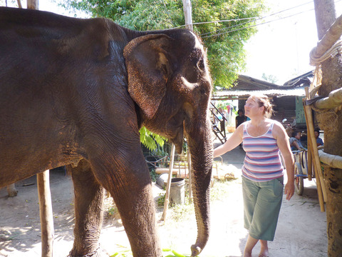 TRUNK TALE: Sarah Blaine with Somsri the elephant they saved.