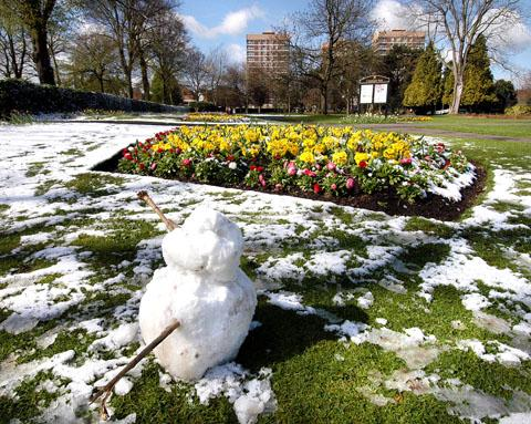 FLOWERS: Snow surrounds a floral display in Cripplegate Park in Worcester. Spending on plants is to be cut by £111,000.