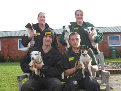 From Top Right Canine Carers Claire Bugler, Top Left Donna Neville, bottom left Matthew Foxall and Carl Hope with a Jack Russell family.