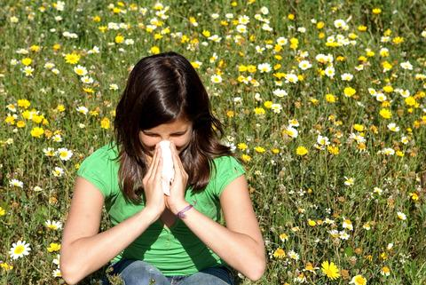 Summer misery for hay fever sufferers