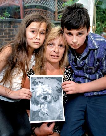 SADLY MISSED: From left, Shakira Jefferies, aged 10, Shaz Jefferies and Joshua Jefferies, 13, with a picture of their dog Pudsey Bear. 2513341202