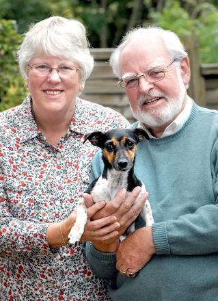 SHE'S SAFE: Dorothy and Colin Richardson with their Jack Russell Pip. Picture by Nick Toogood. BUY THIS PHOTOGRAPH: worcesternews.co.uk/pictures/sales. 4313434801