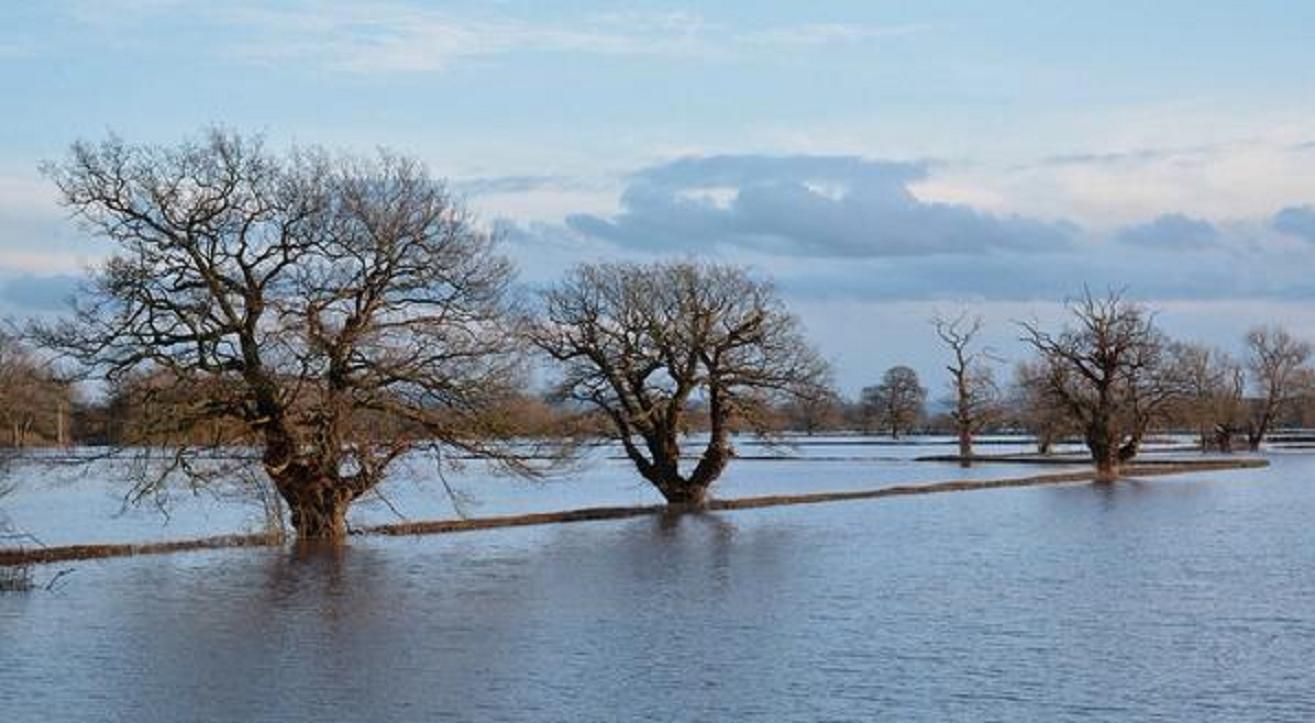 A flooded image by Dave Throup, from the Environment Agency