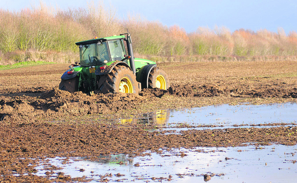 DAMAGE: How flooding damages fields