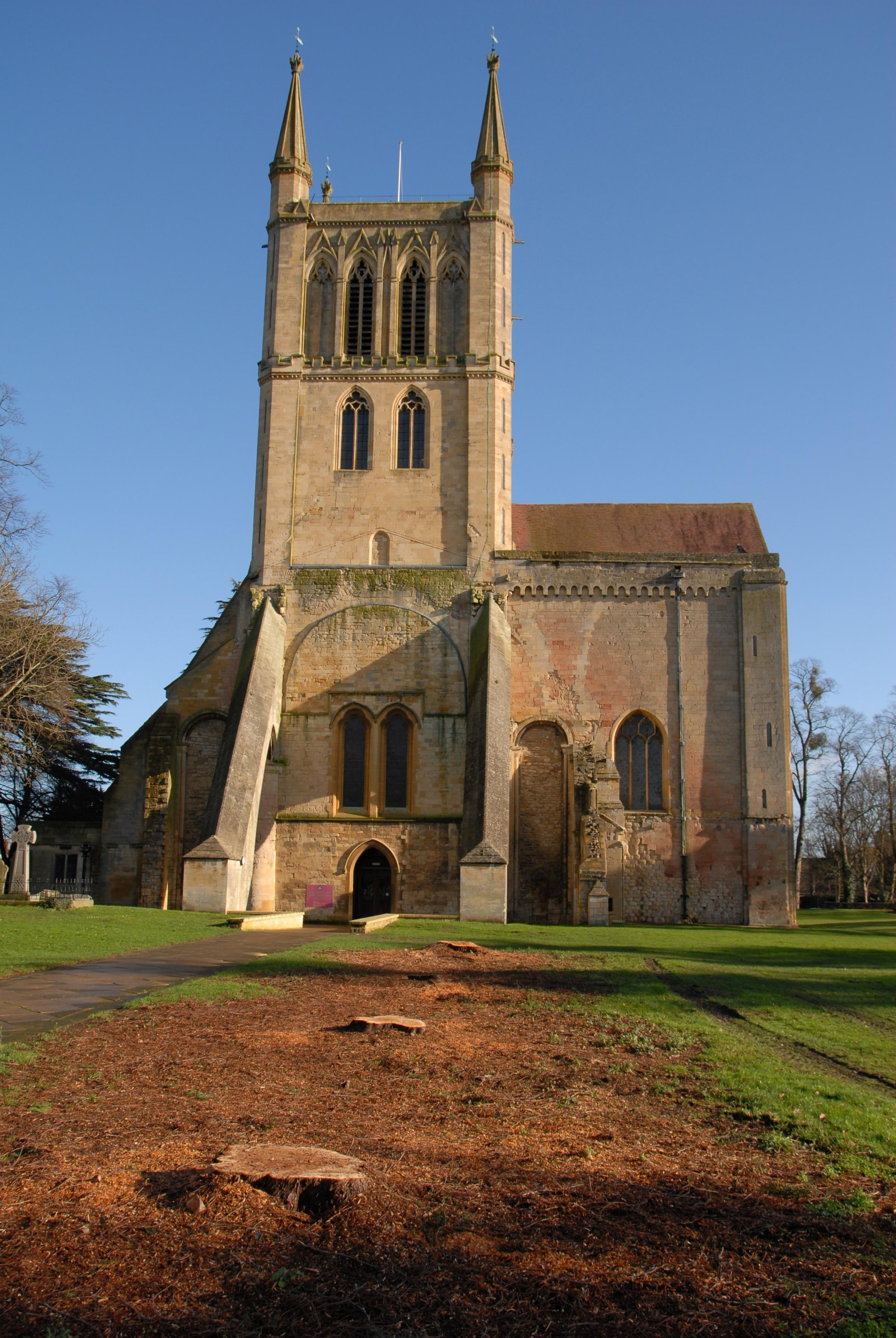 Trees that marked Abbey nave chopped down