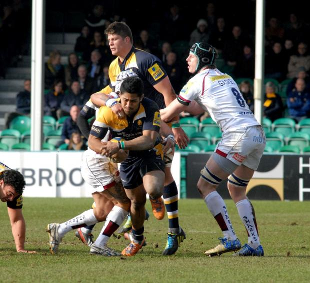 0814527609 Paul Jackson 22.02.14 Worcester Worcester Warriors vs Sale Sharks. Ravai Fatiaki. (4196595)