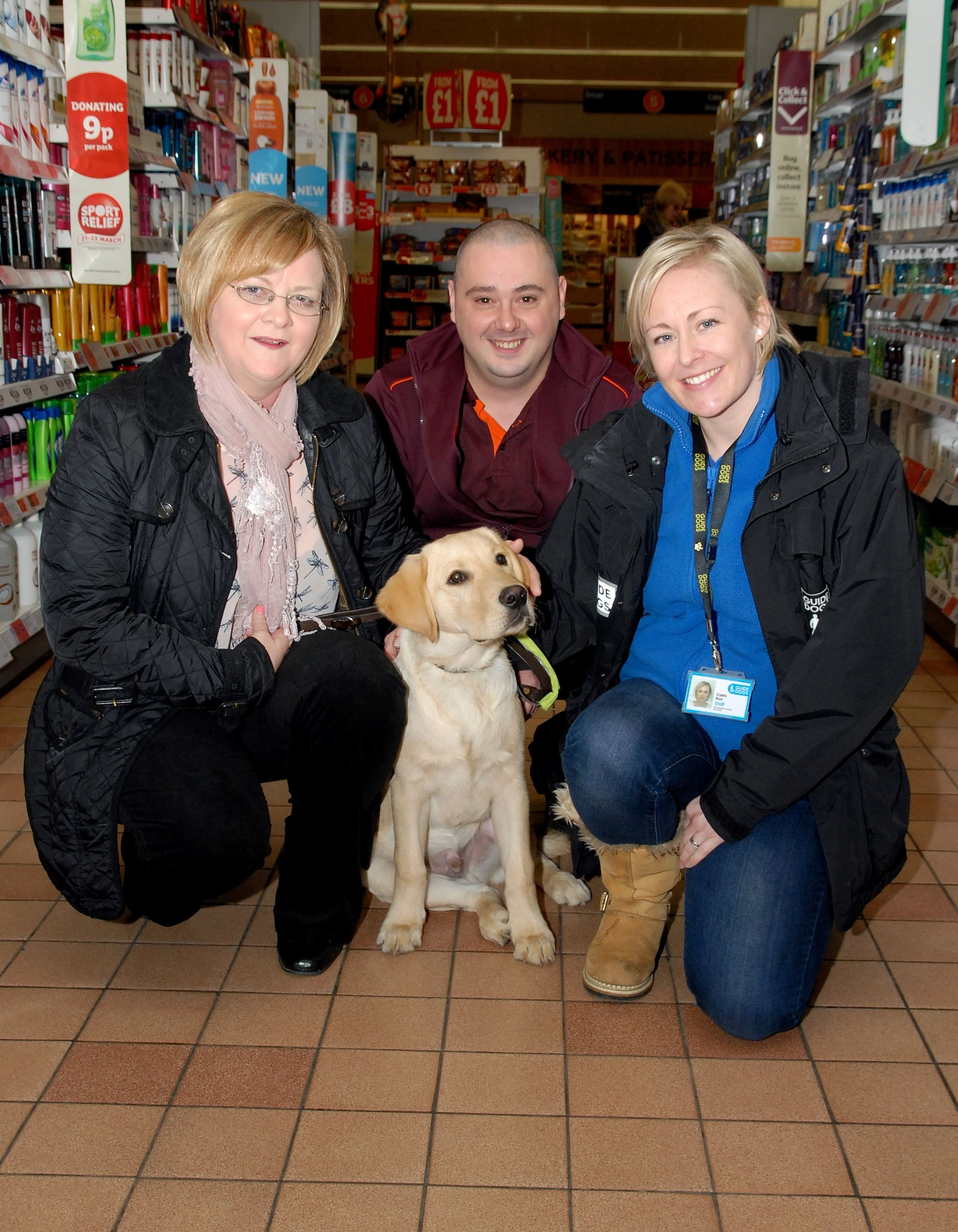 Poignant guide dog visit to city supermarket