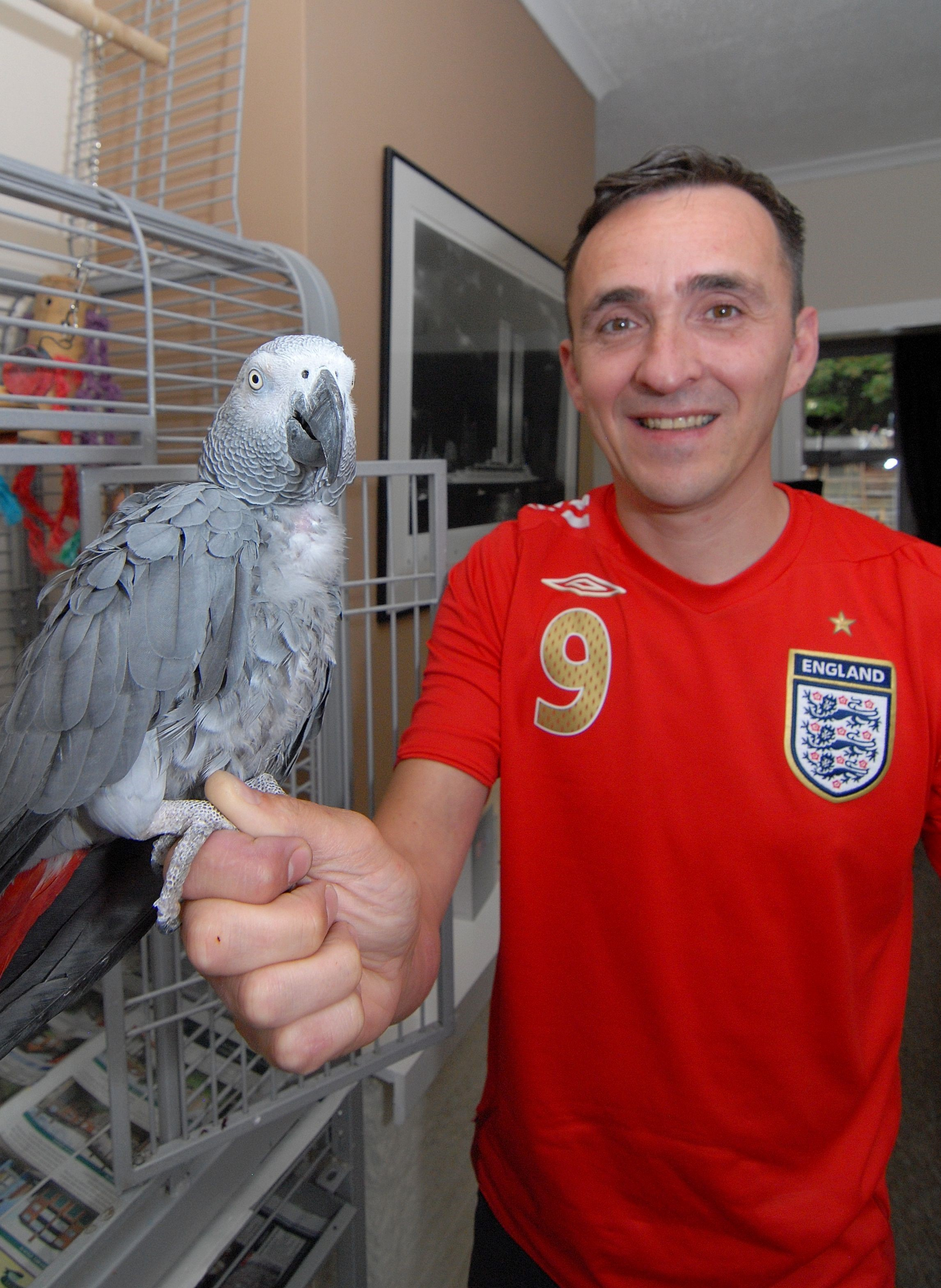 Look who's squawking: Patriotic parrot's song for England