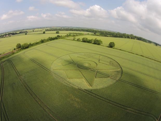 Crop Circle Vandalism not Art... 3100169