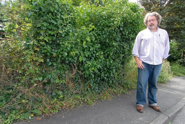 Former council leader's dismay on overhanging bushes