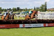 FLYING FINISH: Aficionado jumps the last fence on Ladies Day at Worcester  Racecourse on June 8 - but