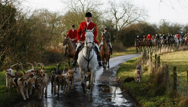 FOX HUNTING; A Worcester News polls has revealed significant opposition to repealing the current act.
