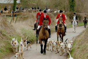Tuesday's letters round up including 'The romance of hunting has long gone'