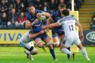 Worcester Warriors make one change for crunch clash with London Irish