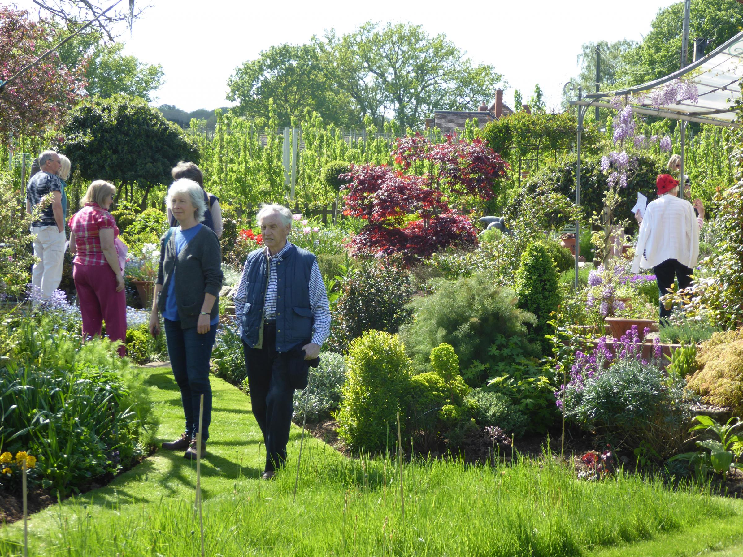 Sheepcote Open Garden NGS