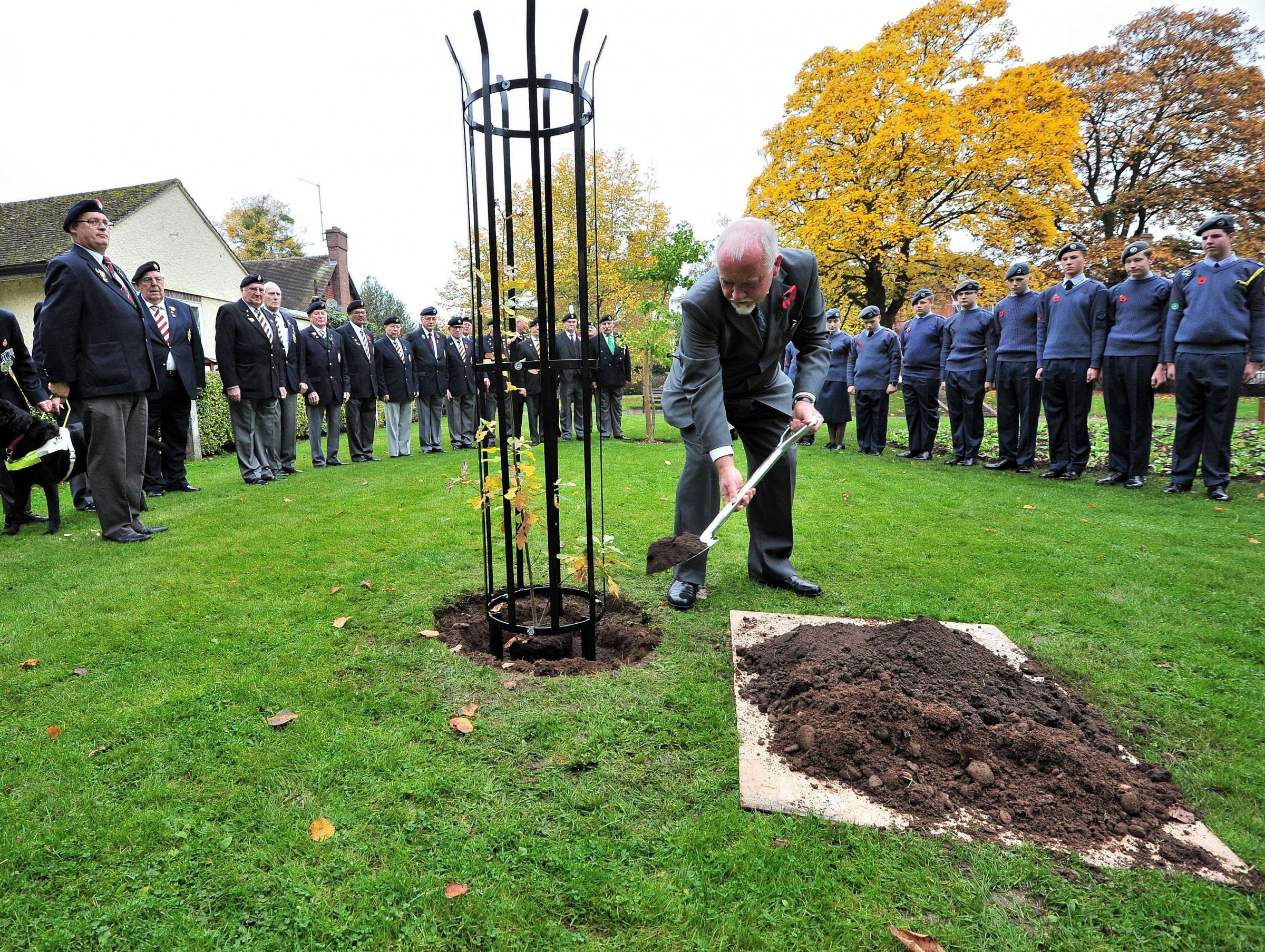 STEADY LAD: John Phillpott plants a tree to remember the fallen of the Nattle of Gheluvelt