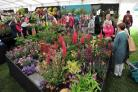 The first day of The RHS Malvern Spring Festival at the Three Counties Showground, Malvern......Crowds in the Floral Marquee...Pic Jonathan Barry 11.5.17.