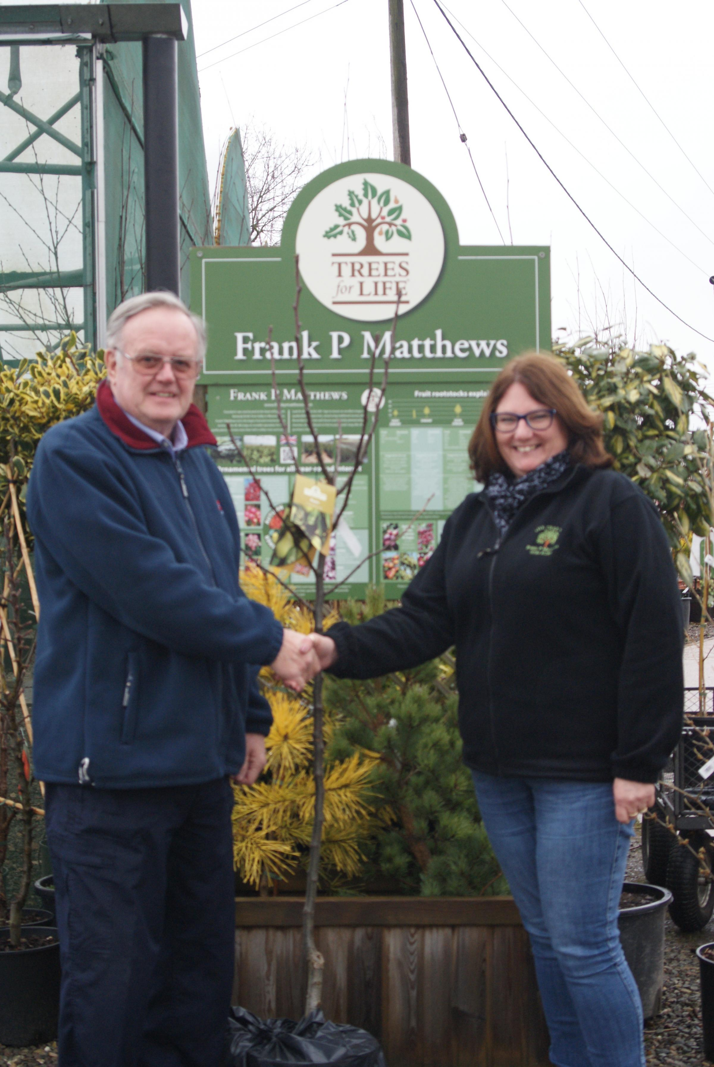Cllr Hopwood receives the tree from Sandra Cooper of Tenbury Wells supplier Frank P Matthews Trees.