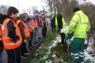 NEW LEAF: Volunteers from Heart of Worcestershire College plant trees at Pitchcroft.
