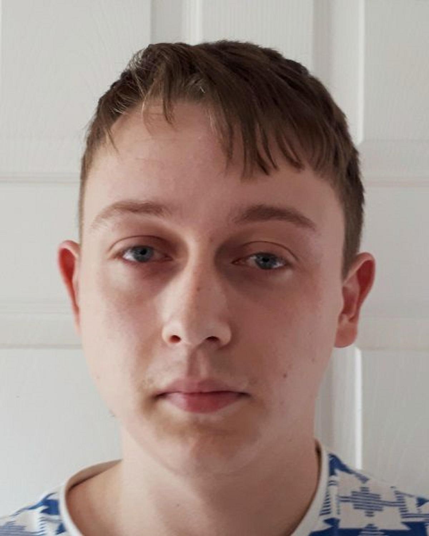 Grooming sexual offender