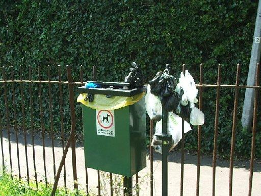 An overflowing dog waste bin
