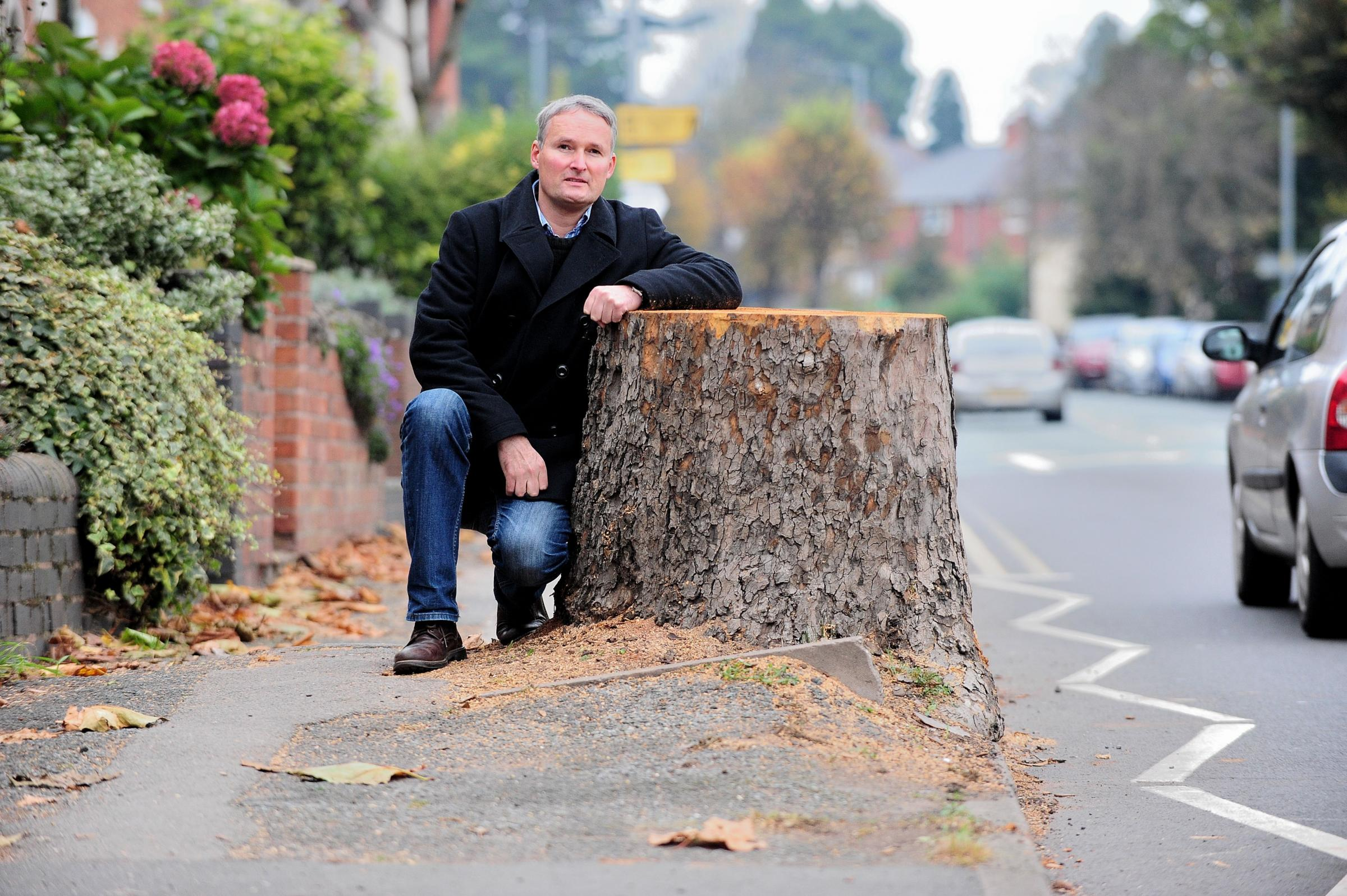 Worcester City Councillor Louis Stephen with the tree stumps, after the trees were chopped down on Bath Road, Worcester, in 2017