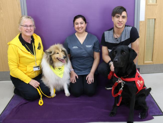 Jackie Medler with therapy dog Merryn, vet Hayley McKenzie, and Harrison Daley with medical detection dog Bounce